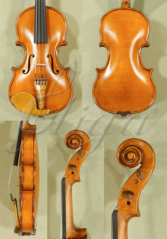 1/16 Student 'GLORIA 2' One Piece Back Violin