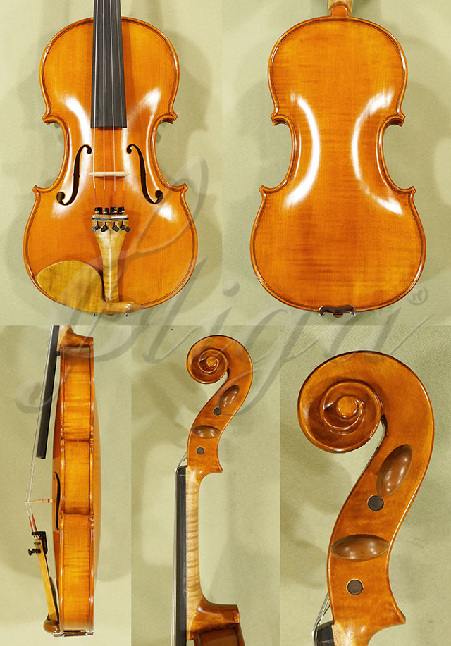 Antiqued 4/4 Student 'GLORIA 1' One Piece Back Violin