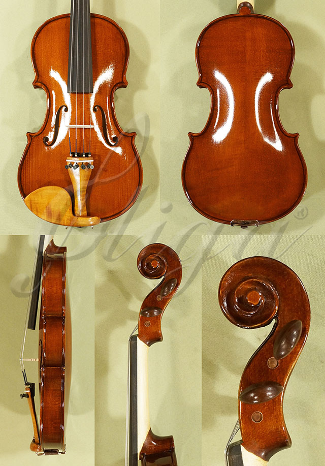 Shiny 1/2 Student 'GLORIA 2' Violin