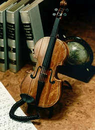 Contact the violin store.